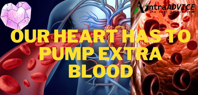 Our Heart Has To Pump Extra Blood