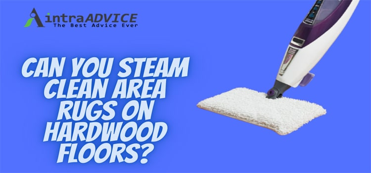 Can you steam clean area rugs on hardwood floors